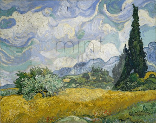 wheatfield-with-cypresses