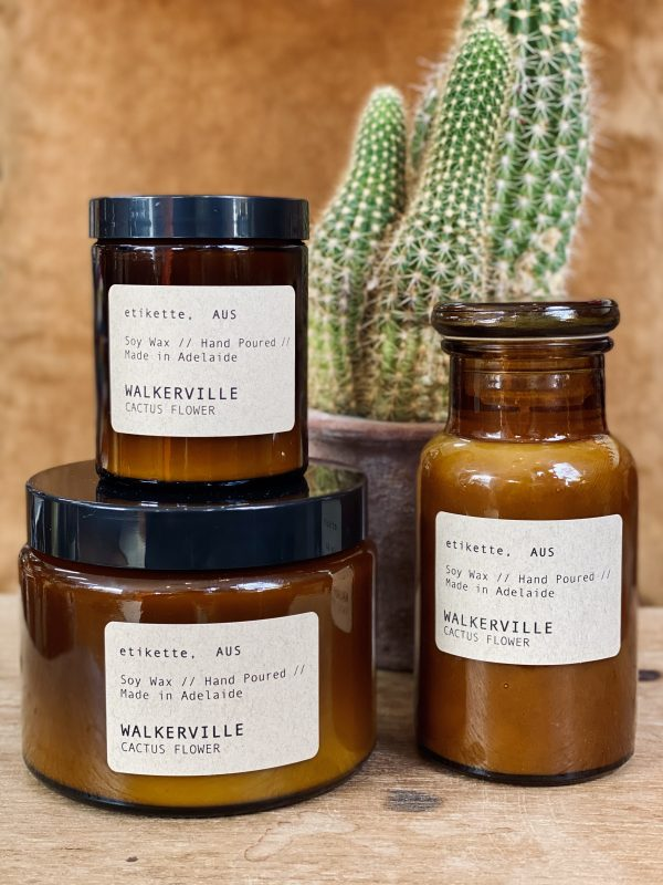 cactus flower scented candle called walkerville by etikette candles